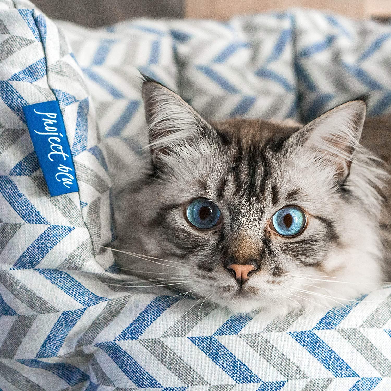 Cat Bed pet-friendly
