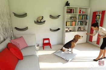 7 top tips for a pet-friendly livingroom